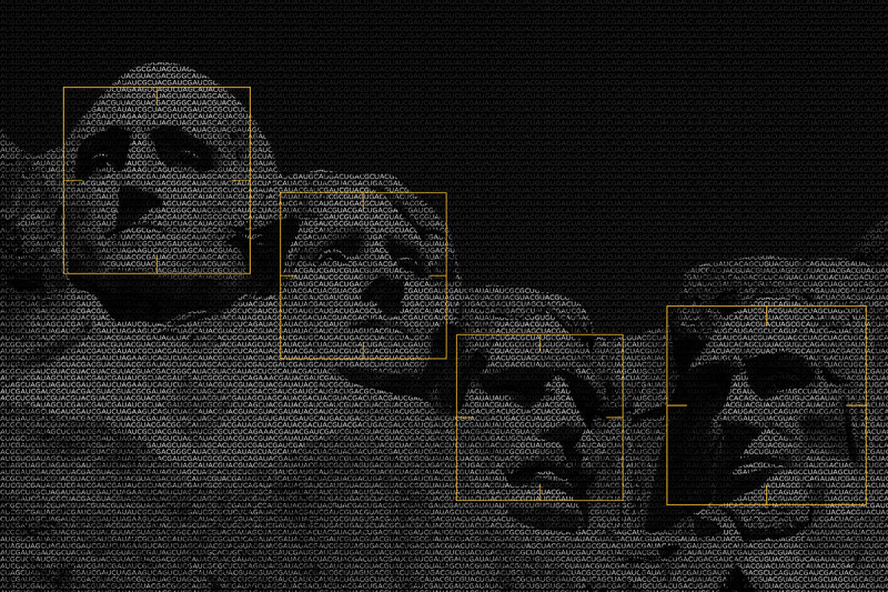 Mount Rushmore viewed through face-detection software.