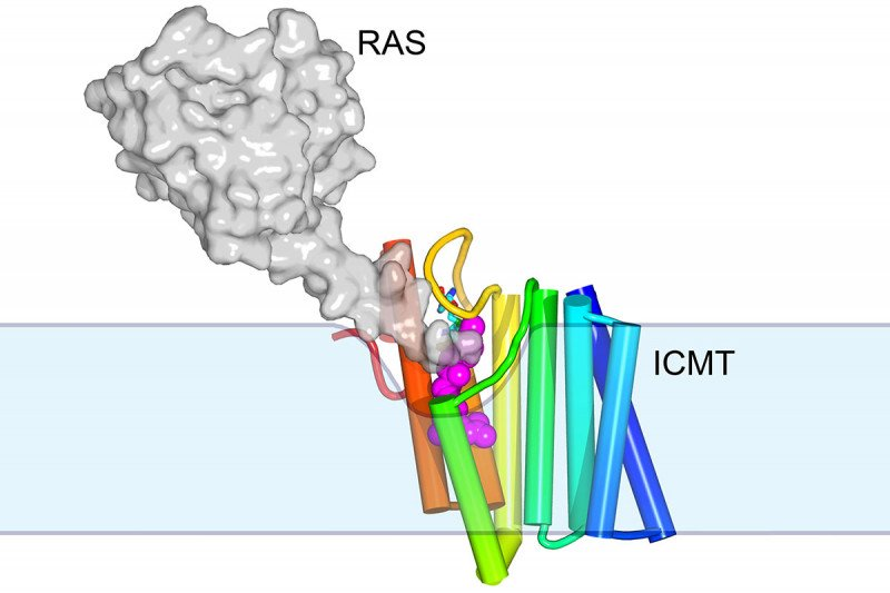A gray blob marked RAS linked to colorful rods marked ICMT