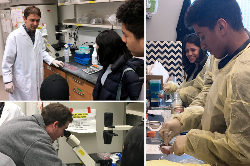 High school students in an MSK laboratory