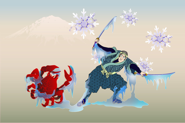 An illustration of a samurai and a crab.