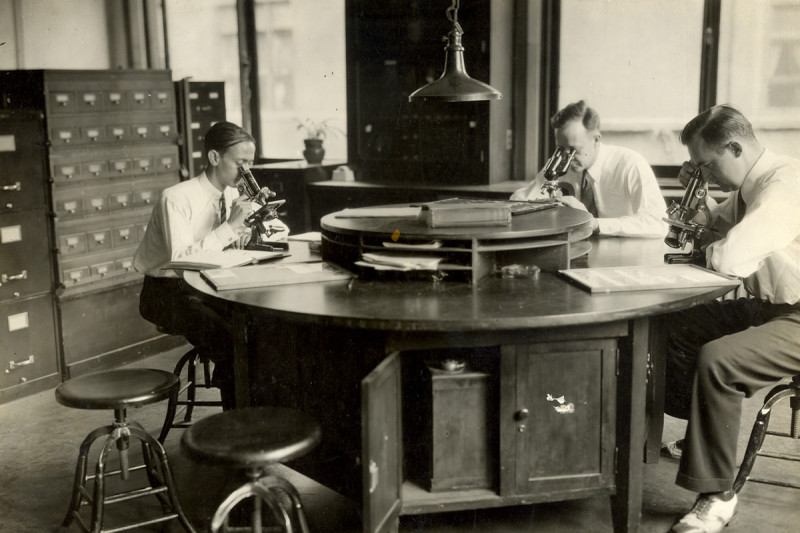 Then: Researchers in the Pathological Research Building at the New York Cancer Hospital in 1917.