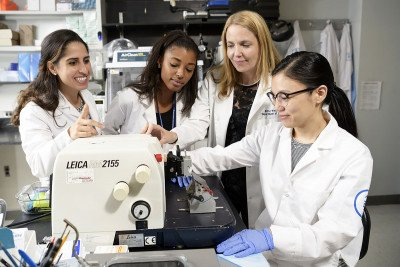 Investigators Lea Moukarzel, Kimberly Dessources, Britta Weigelt, and Sarah Kim in the lab.
