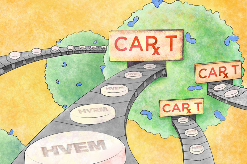 Illustration of CAR T cells with conveyor belts leading out of them carrying HVEM protein in tablet form.