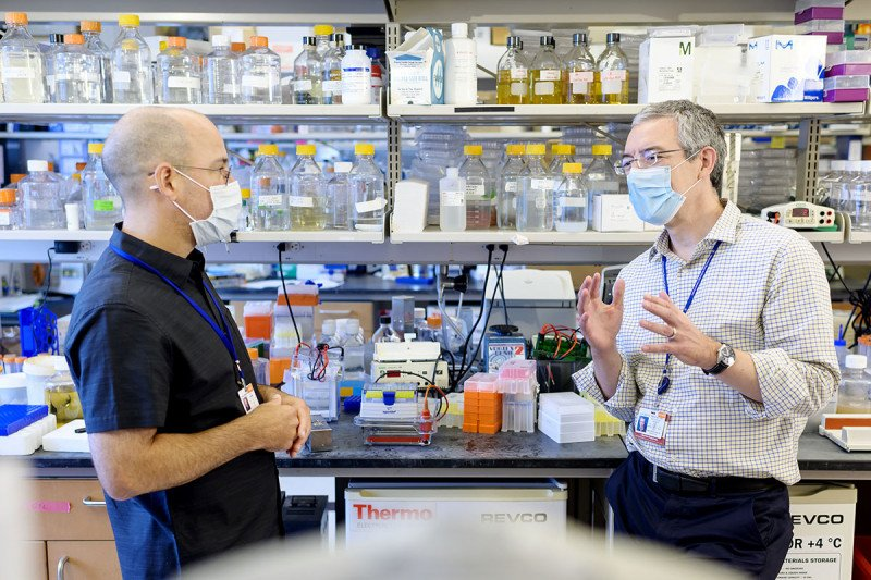 Memorial Sloan Kettering structural biologist Christopher Lima and physician-scientist Michael Glickman