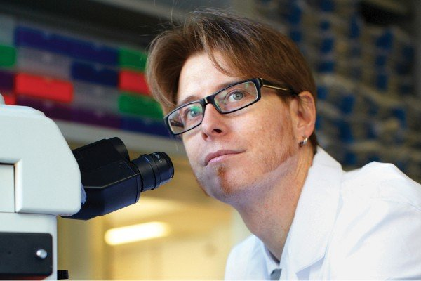 Pictured: Surgical pathologist Jorge Reis-Filho uses DNA sequencing and functional genomics approaches to explore the biology of rare and aggressive forms of breast cancer, and to develop new treatments.